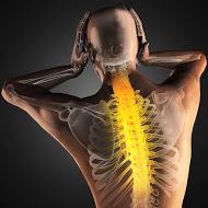 presentation chiropraxie