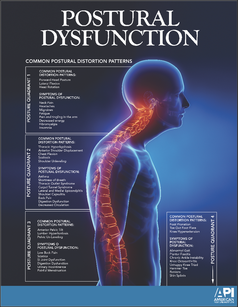 Postural Dysfunction